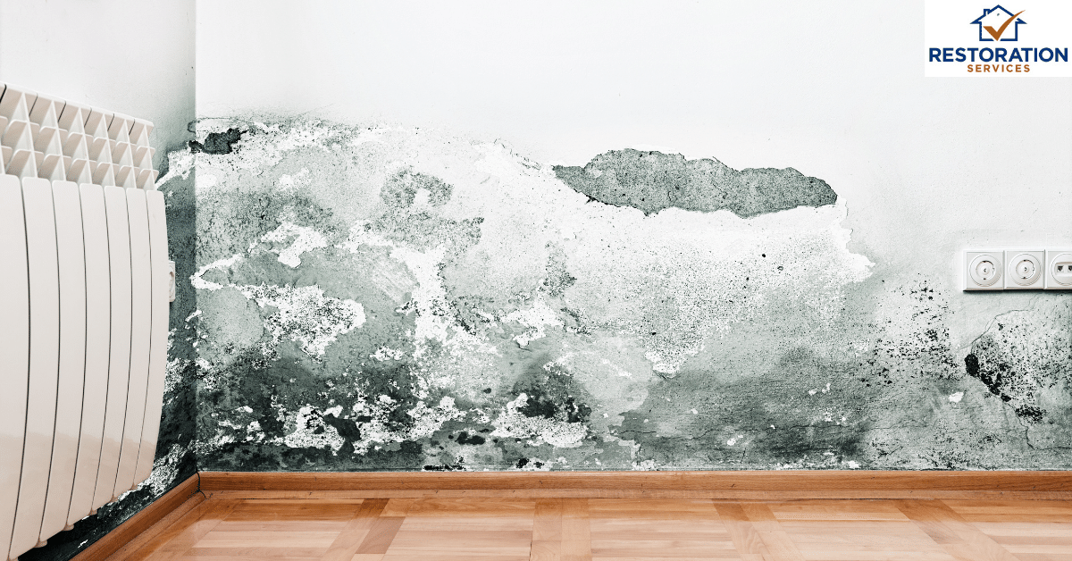 Water damage restoration Kansas city : A quick view