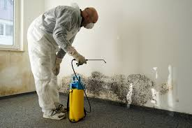 Mold remediation Los Angeles