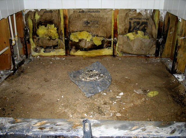 Mold remediation San Diego