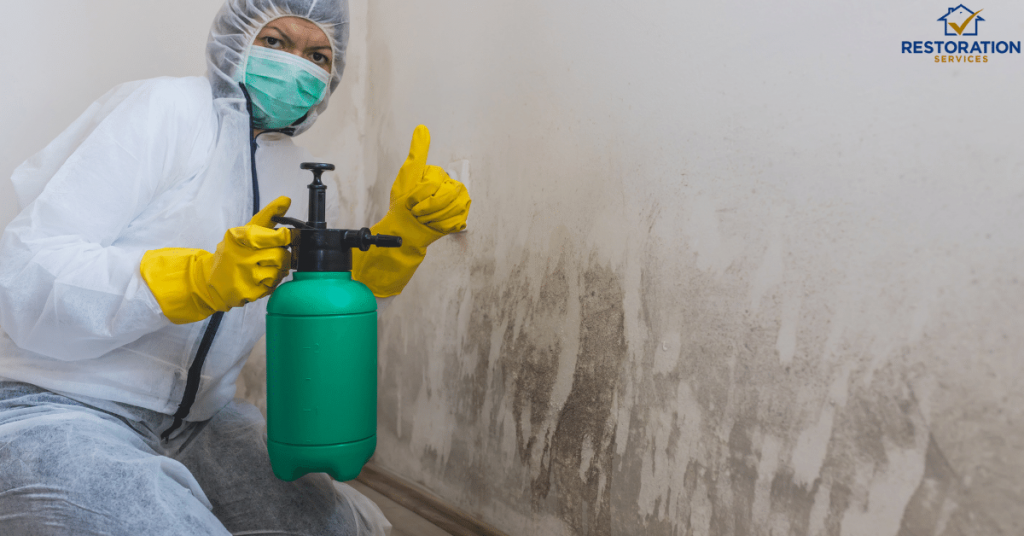 Mold Remediation Companies Los Angeles