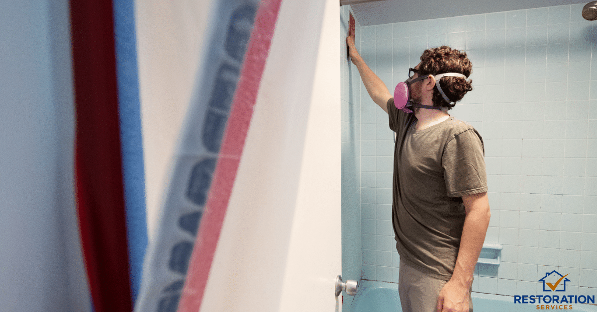 Mold remediation CT – Professional Companies and their services