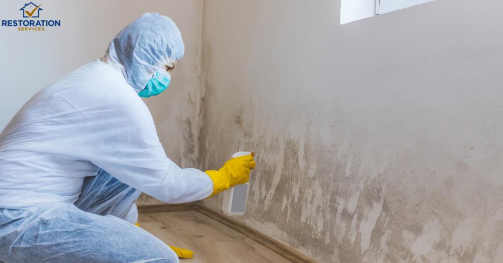 Mold Inspection Atlanta