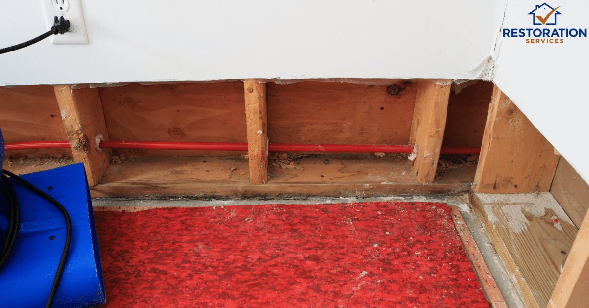 Water Damage on Baseboards – What should be your next course of action