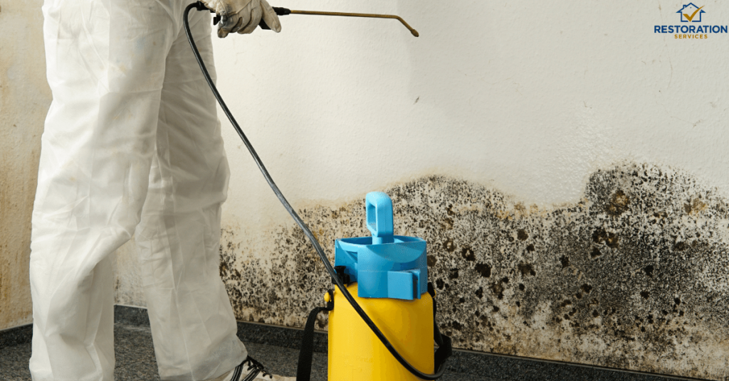 Air Duct Mold Removal Cost