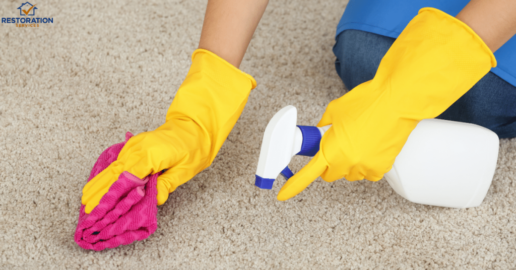Carpet Cleaning Companies Spokane