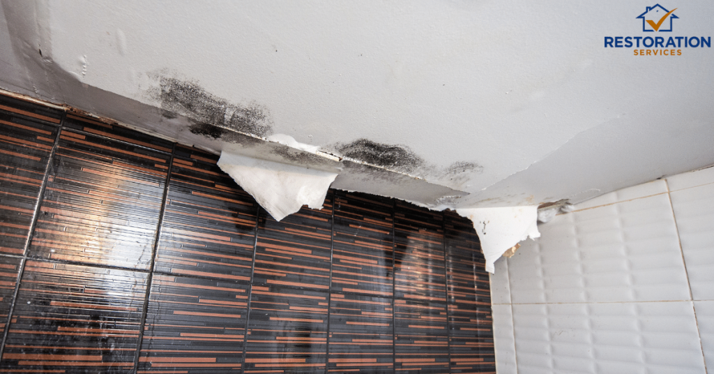 Ceiling Repair Water Damage