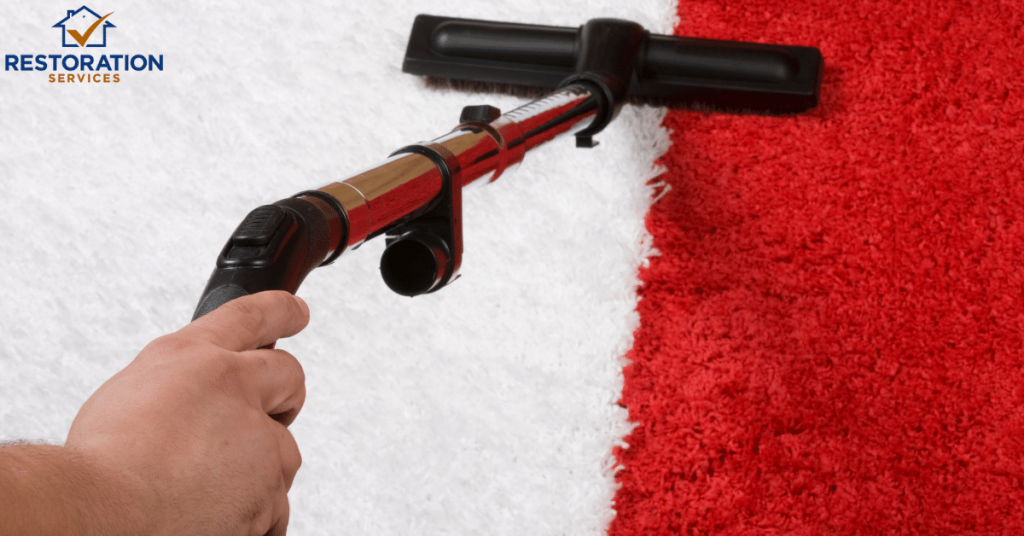 Cleaning Indoor Outdoor Carpet